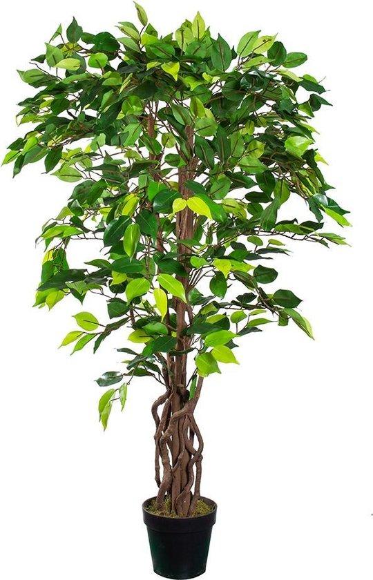Ficus Kunstplant
