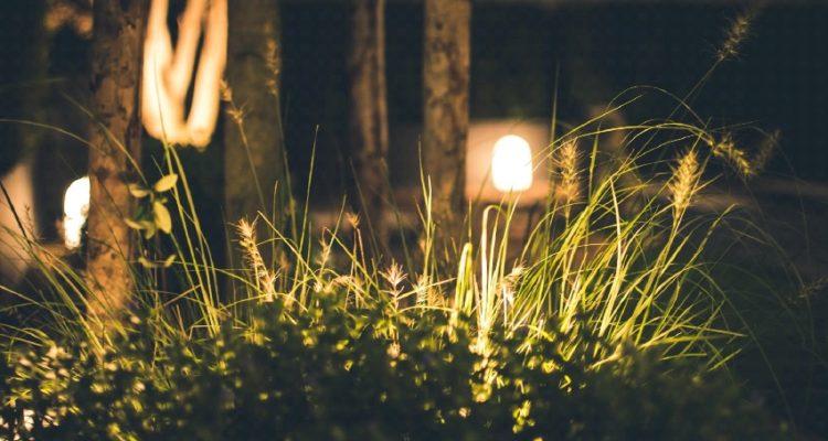 beste verlichting voor in de tuin