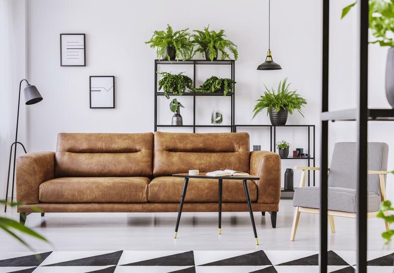 bruin interieur met planten