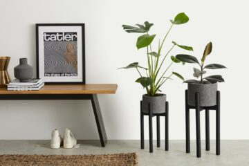 hippe-plantenstandaard