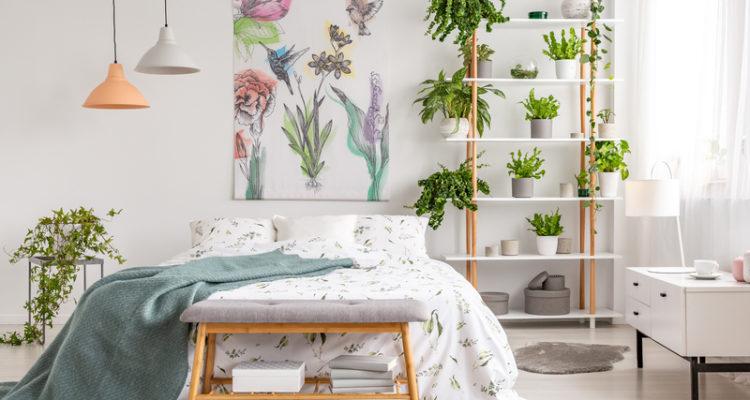 hoe kan je je meer natuur in je interieur verwerken