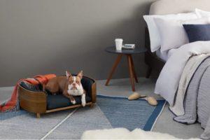 huisdieren design meubels