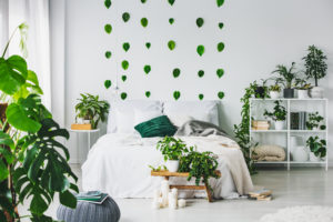 urban jungle interieur
